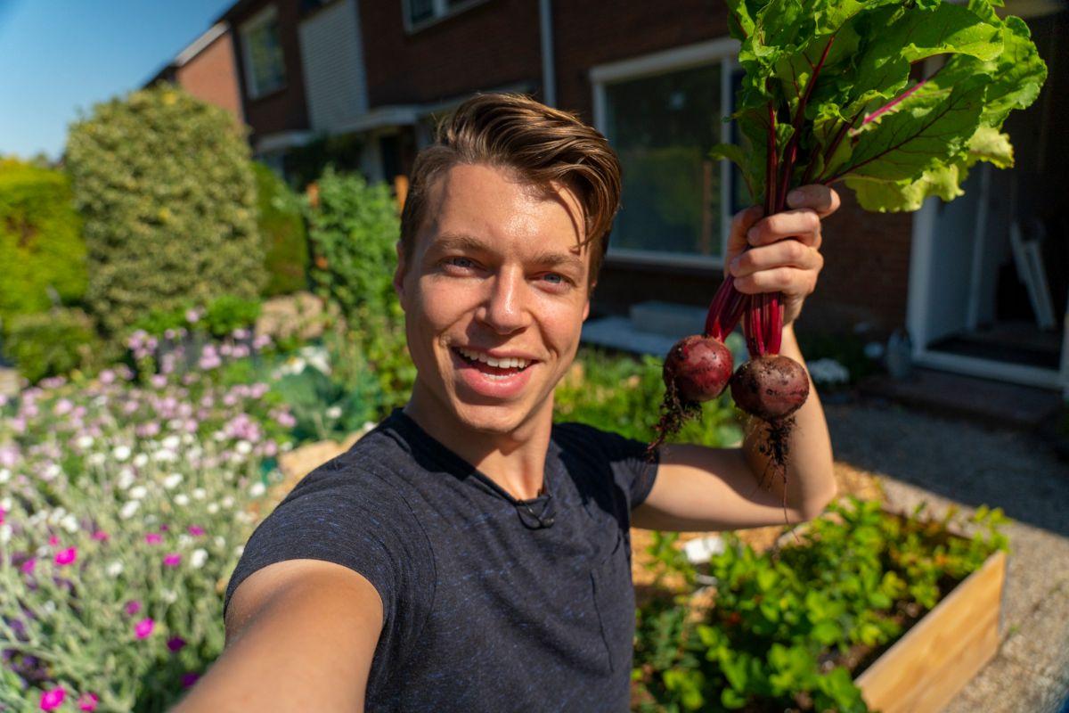 The Farm Dream Raymond Almelo