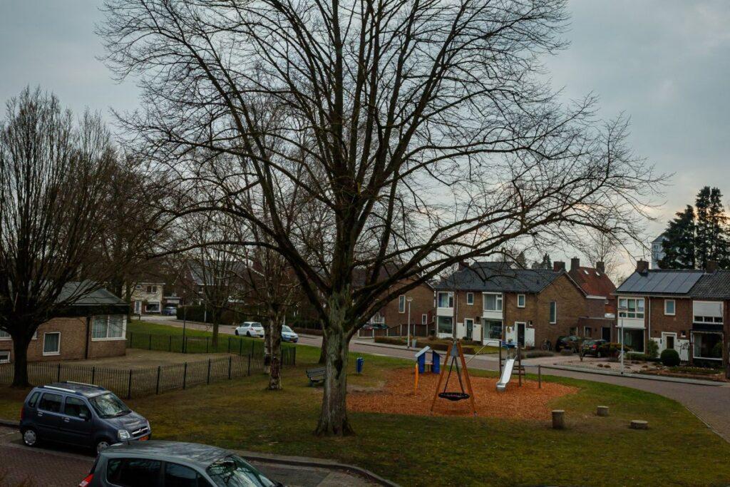 Uitzicht vanuit woning in Almelo