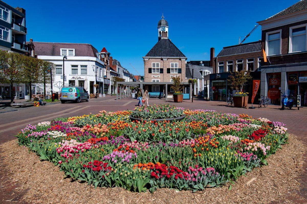 Tulpen op de Koornmarkt in Almelo