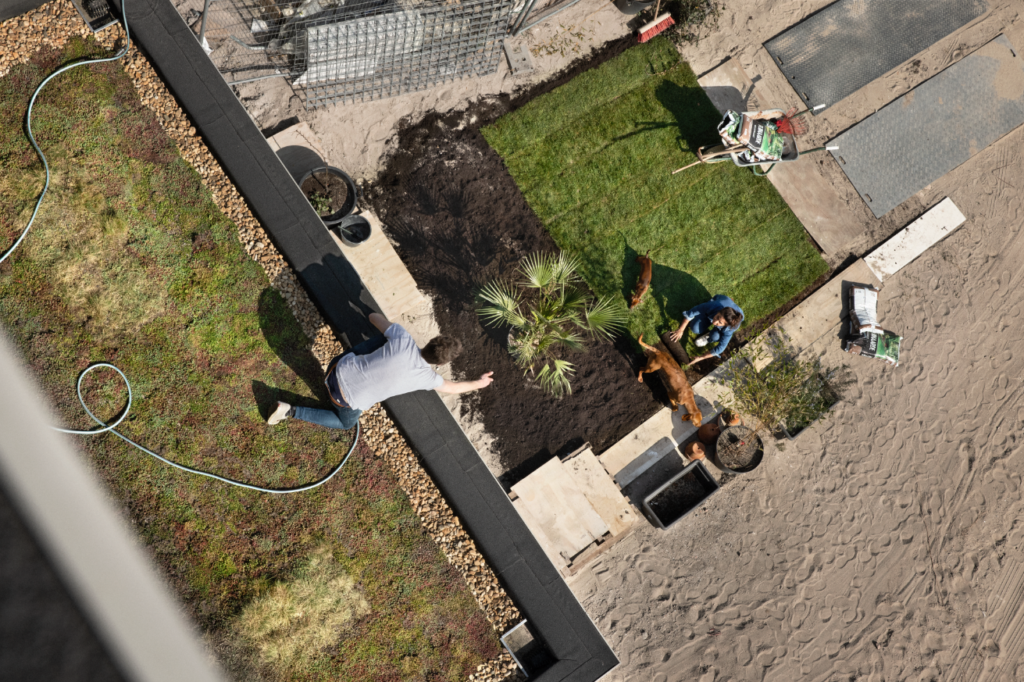 Interpolis groene daken