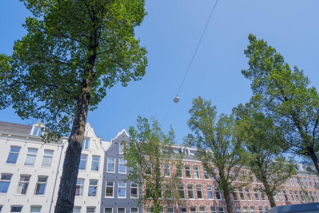 eerste van swindenstraat dapperbuurt amsterdam oost gevels bomen iepen