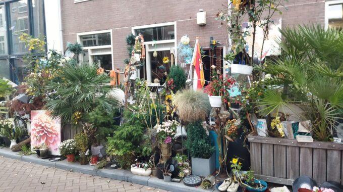 studentenhuis Amsterdam mini-openluchtmuseum nieuwe amstelstraat amsterdam