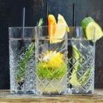 gin tonic apeldoorn