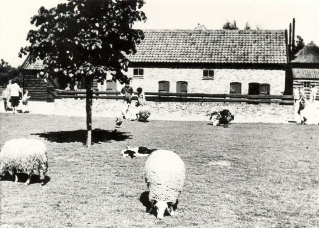 kinderboerderij malkenschoten