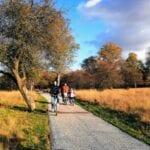 Fietsroute Stad en Natuur herfst