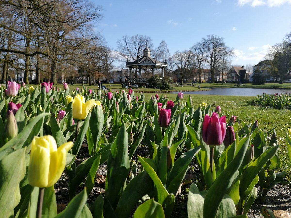 Lente in Apeldoorn