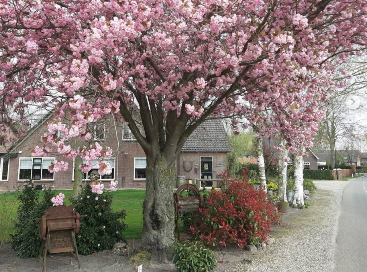 mooiste dorpen rondom Apeldoorn