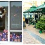 sint en pietenjacht kerstbomen