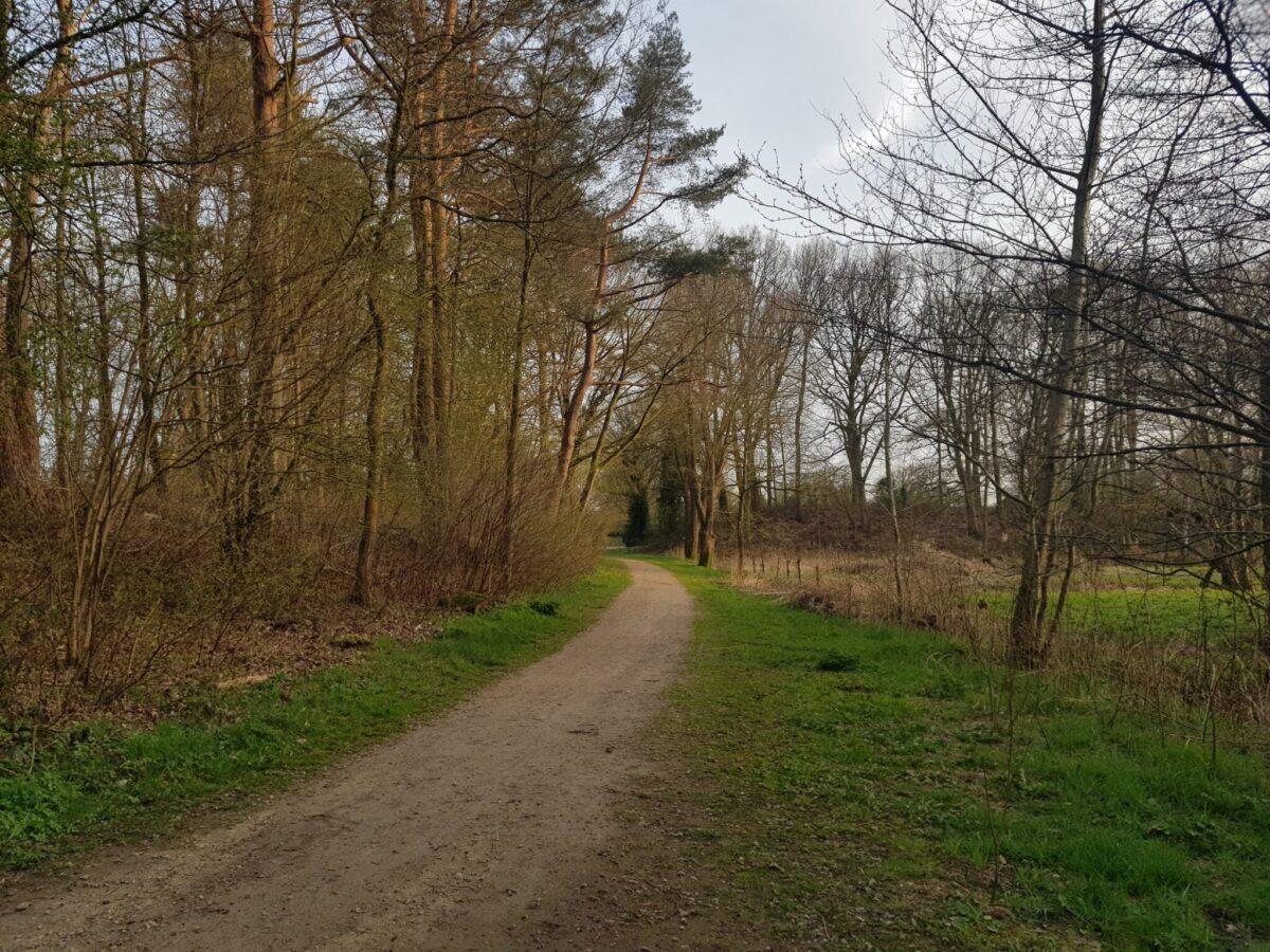 Rijksweg
