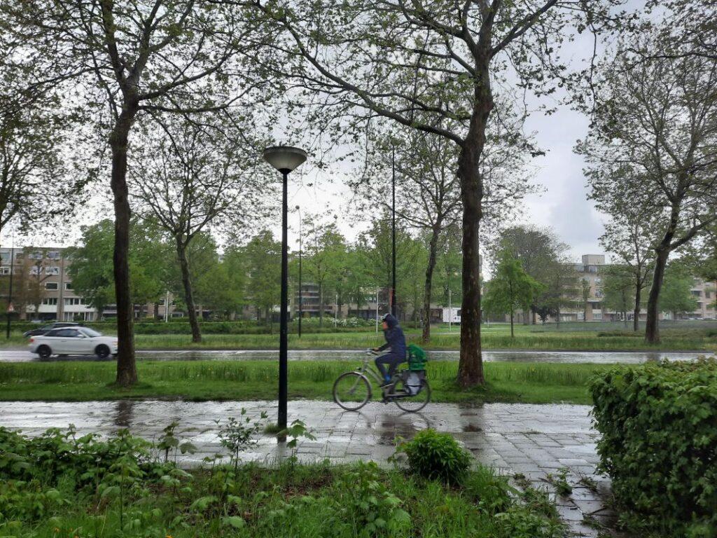 regen prins willem-alexanderlaan apeldoorn