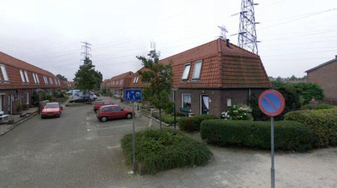 mussenweg 2008