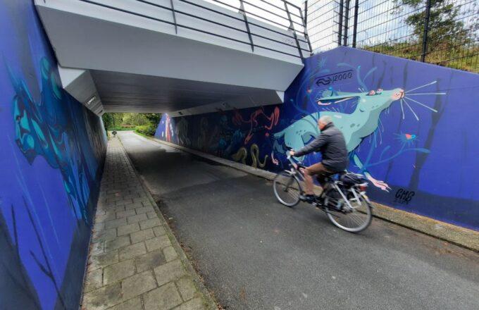graffiti fietstunnel de voorwaarts de maten