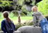 Burgers' Zoo, foto Herman van Alfen