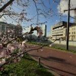 Aanbiedingen in Arnhem