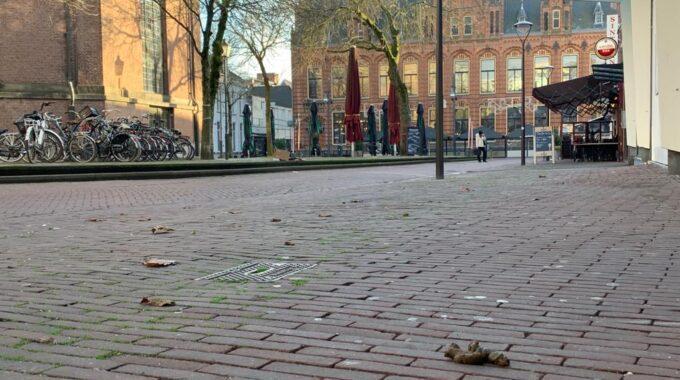 Hondenpoep in Arnhem