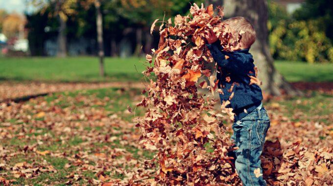 Kind speelt met bladeren