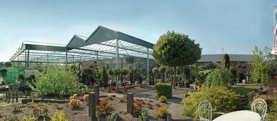 tuincentrum-hoveniersbedrijf-de-bolusberg-bergen-op-zoom