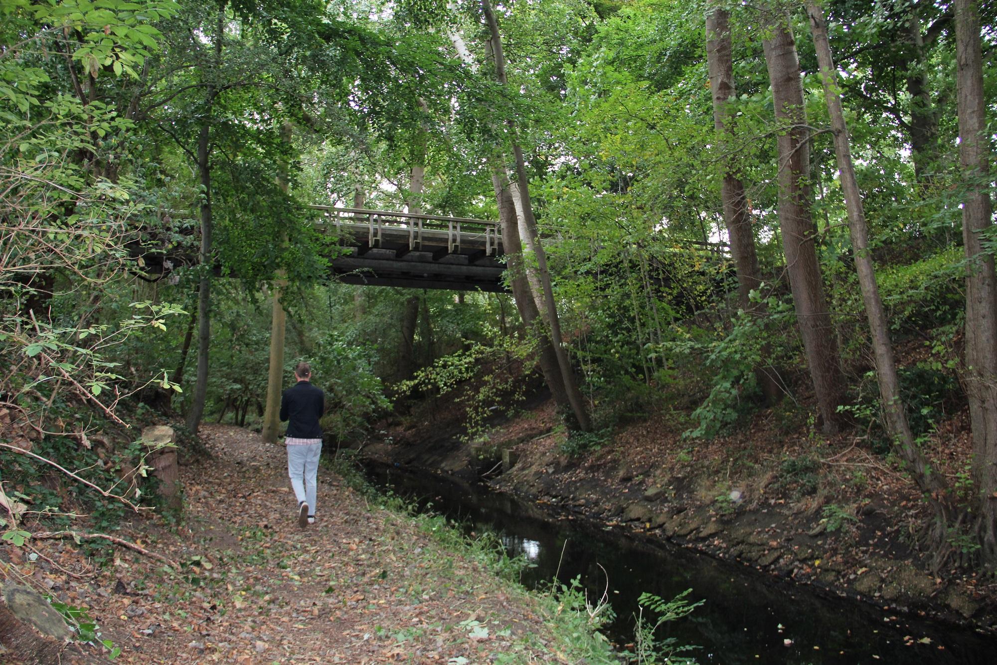 de zoom Wandelvrijwilliger alzheimer zoombrug brug groen wandelen langs het water van de zoom natuur groen beekje water