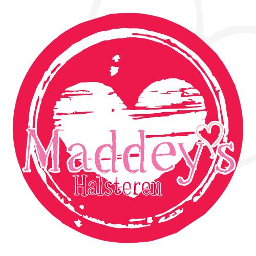 IJssalon Maddey's Halsteren