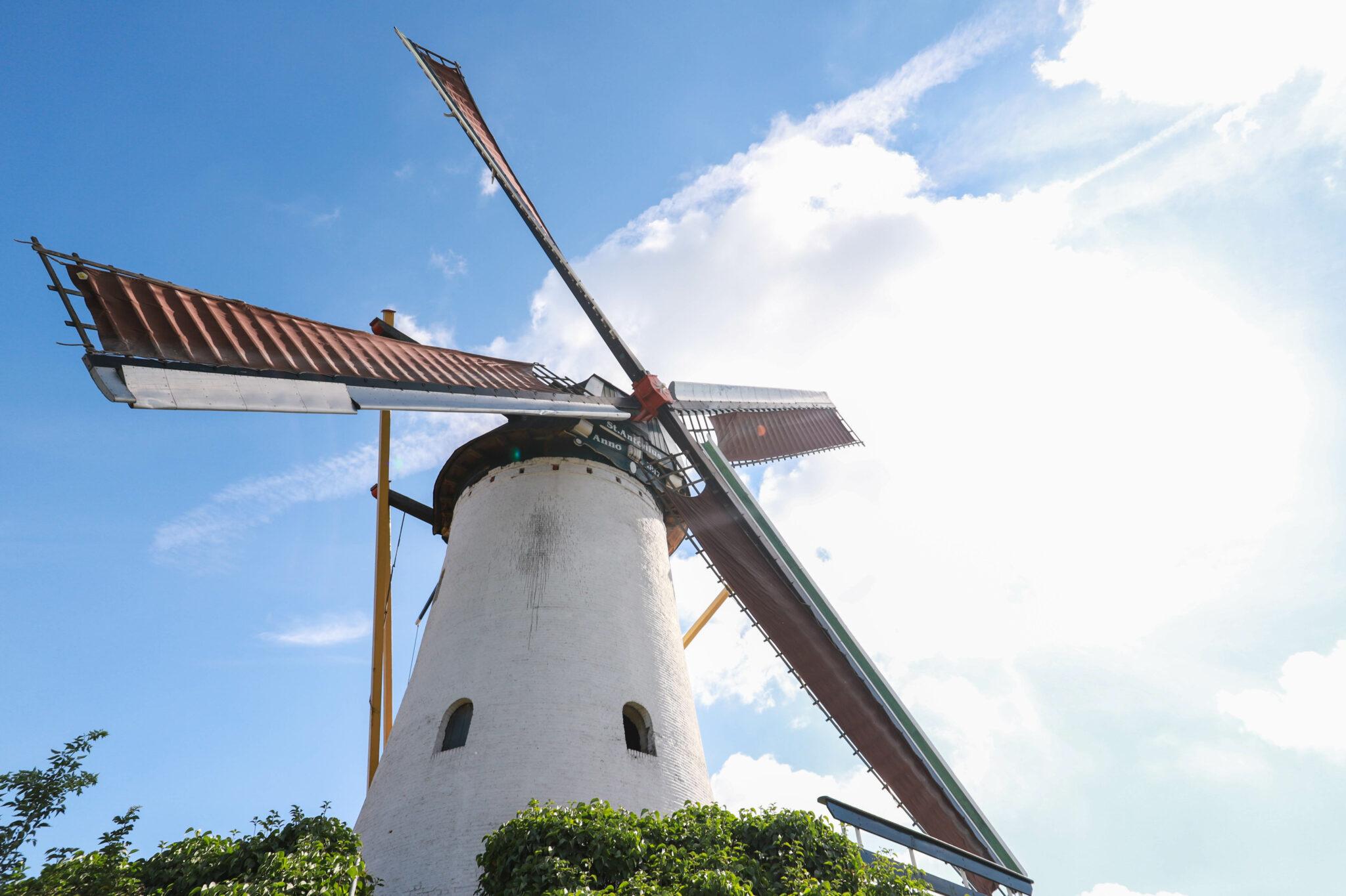 molen Halsteren Halsterseweg Sint Antoniusmolen