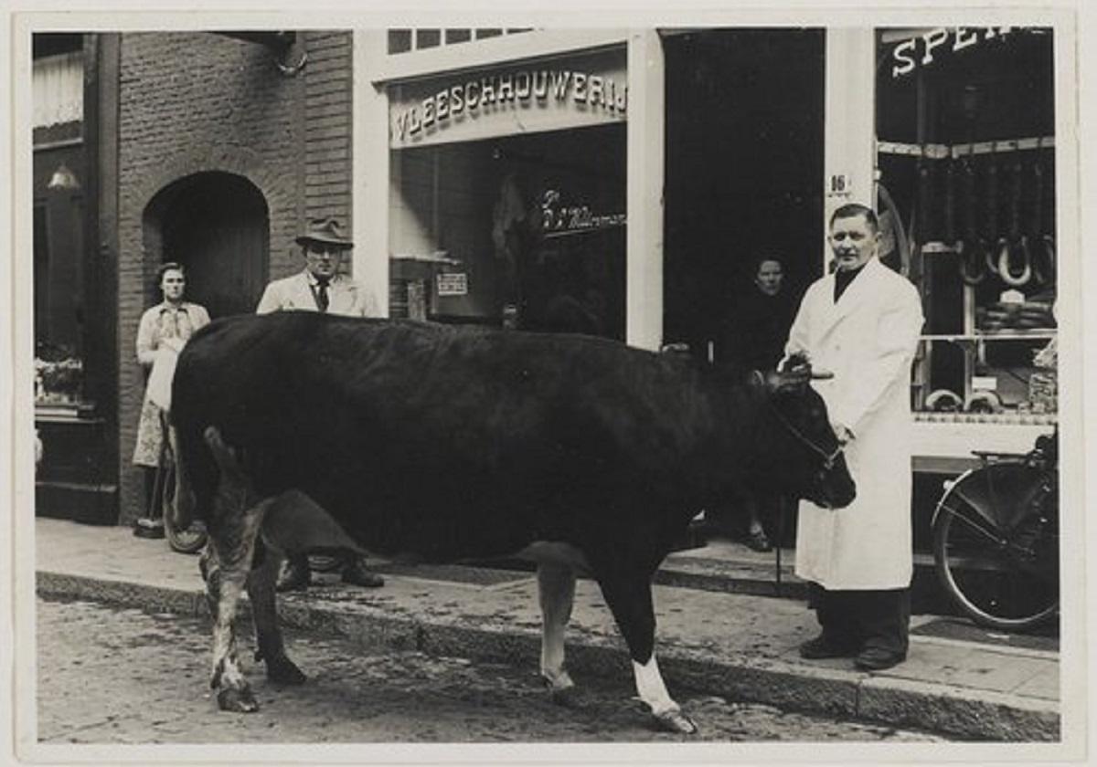Bergen op Zoom 1950