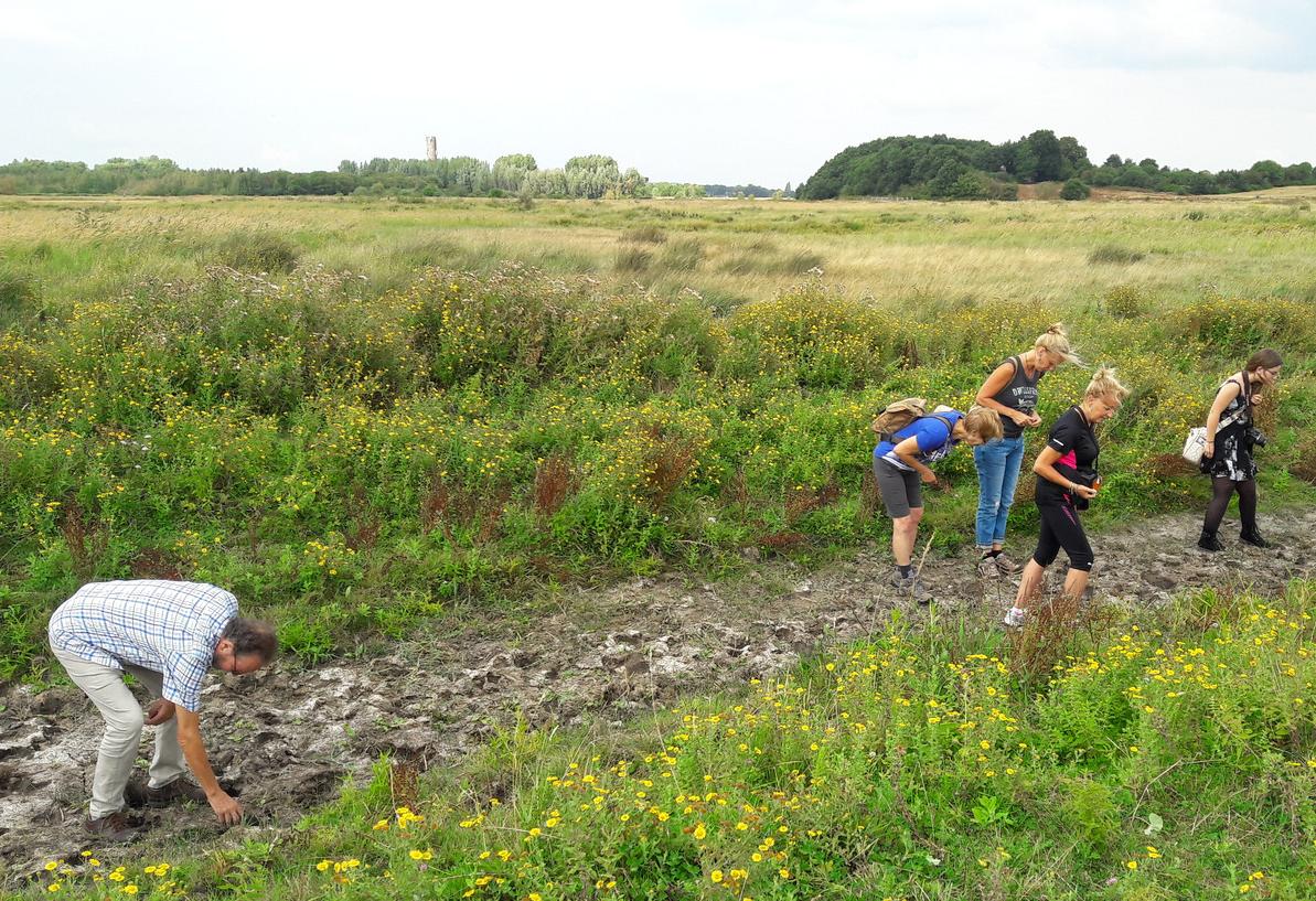 Wandelaars speuren in de droge bedding van De Blaffert naar restanten van het verdwenen dorp Hildernisse.