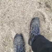 wandelen wandelschoenen wandelroute zurenhoek brabants landschap zandvlakte zandverstuiving natuur bos brabantse wal bergen op zoom