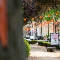 dorpsstraat halsteren oranje versieringen vlag vlaggen voetbal EK holland oranje straat
