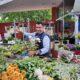 Bloemenshop Igor indebuurt Bergen op Zoom