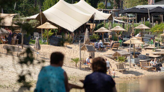 natuur bergse heide water meer boom bomen zand strand zomer de berk picknick