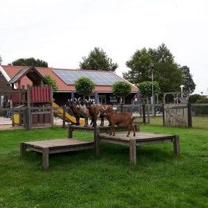 Parkhoeve Breda-Noord Kinderboerderij