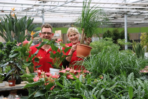 Poppelaars Budget Bloemen & Planten