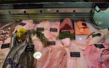 Vishandel Noordzee