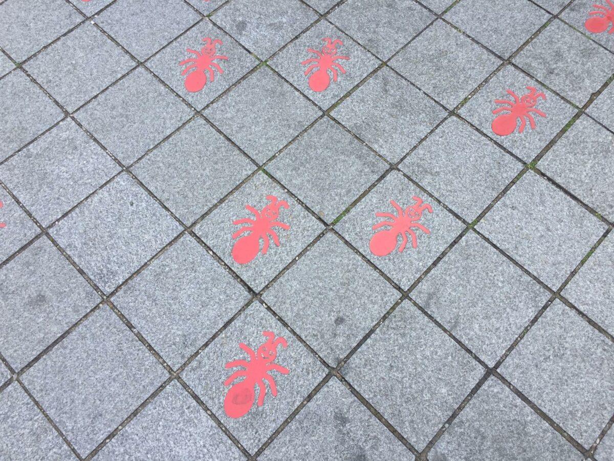 rode mieren willemstraat
