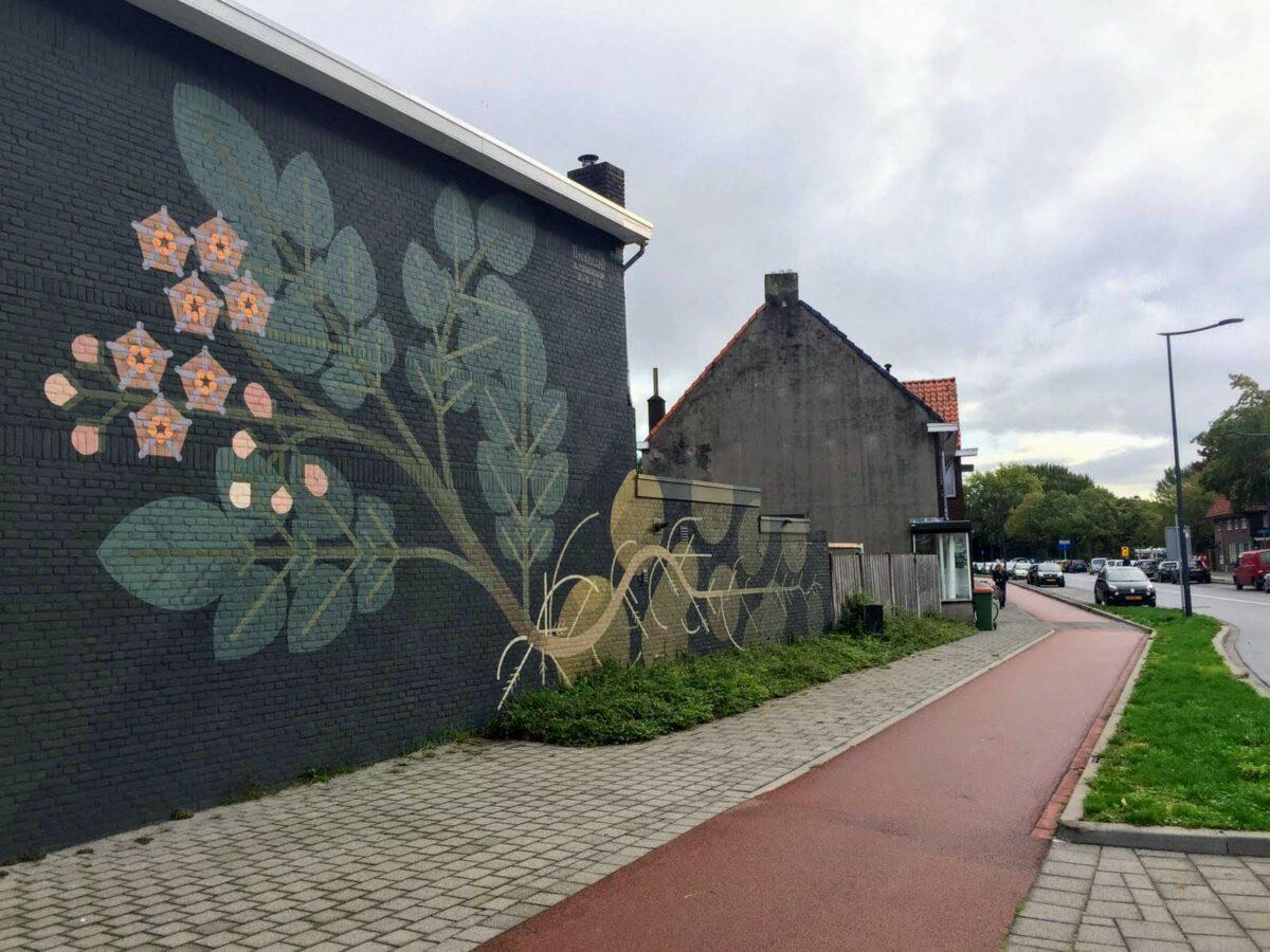 vincent van goghstraat blind walls gallery