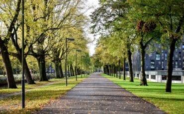 breda pad herfst weekendnieuws
