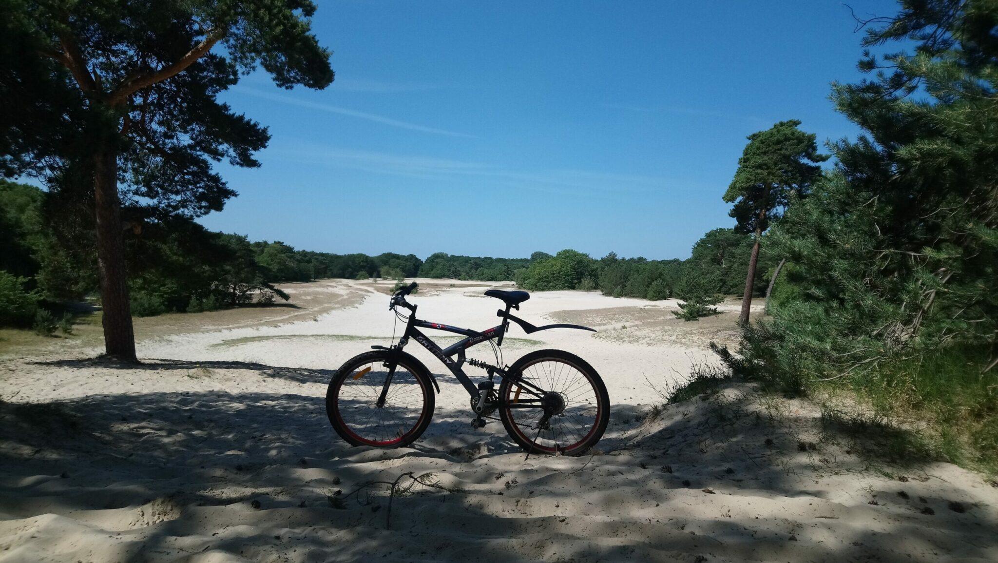 Mountainbike routes in en rondom Breda - Cadettenkamp