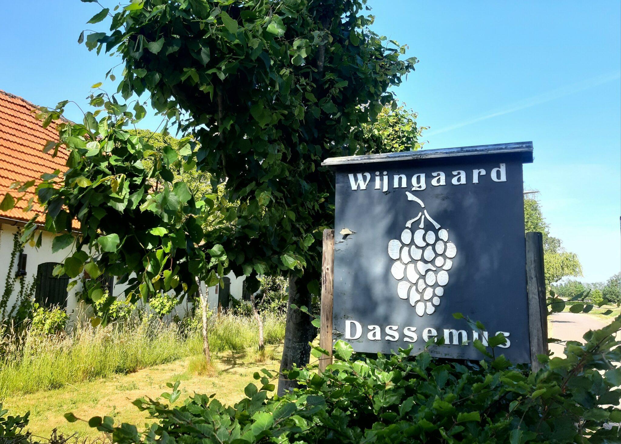 Brabant wijnland