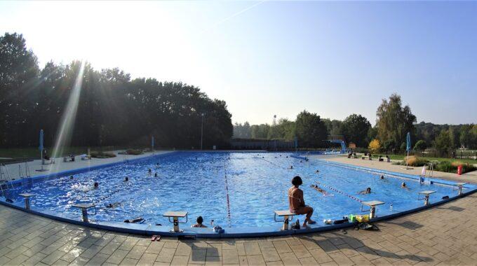 zwembad wolfslaar