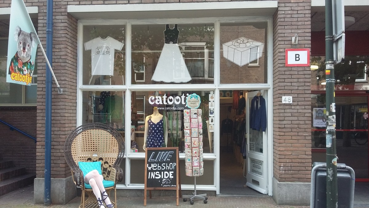 Catootje dicht Delft