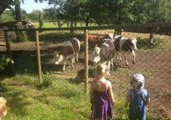 kinderopvang in Delft