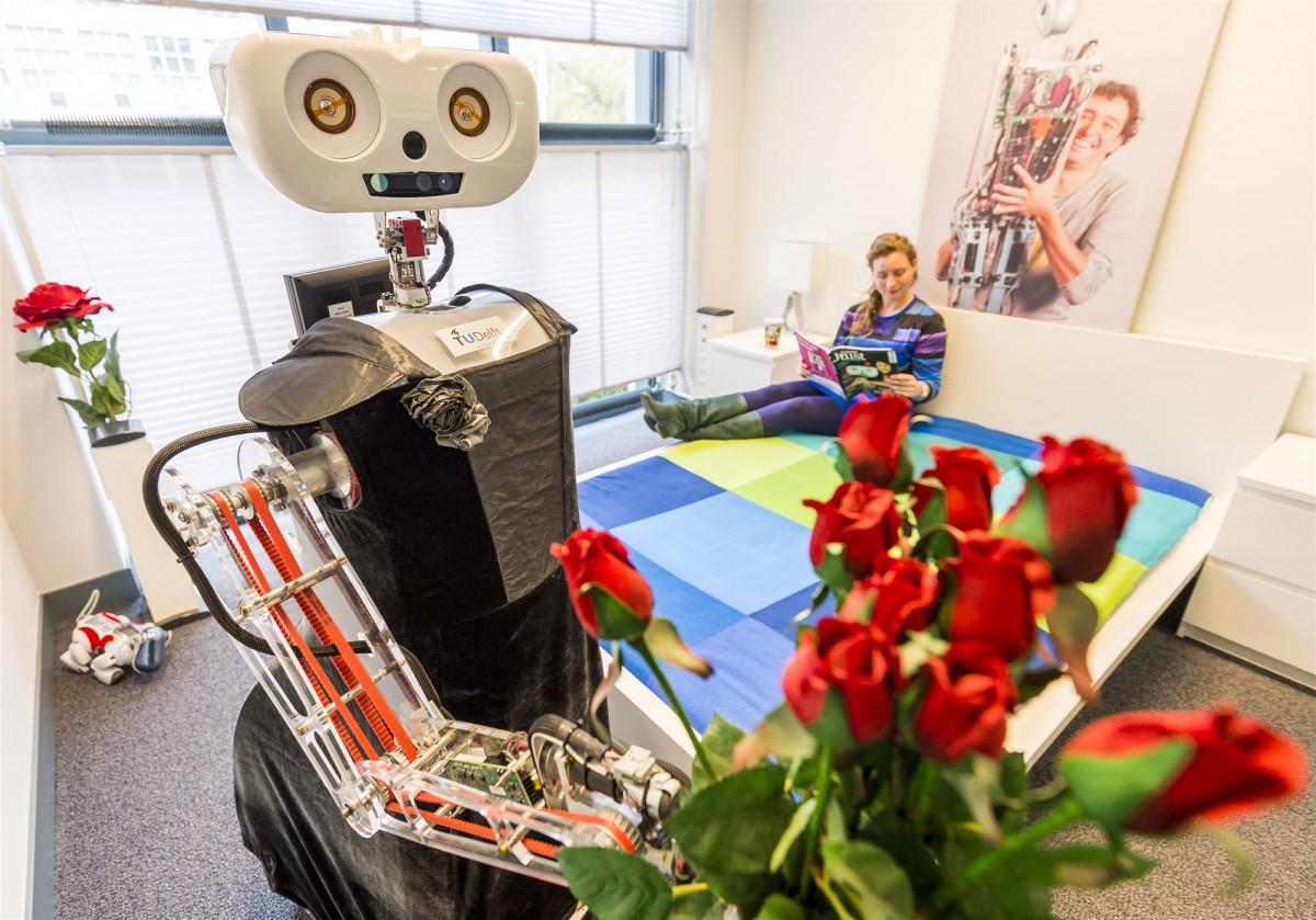 Robot Delft