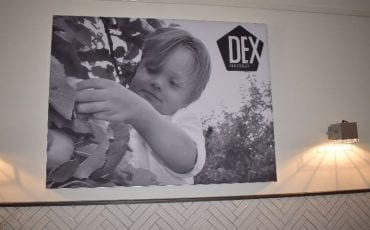 dex lunchbar