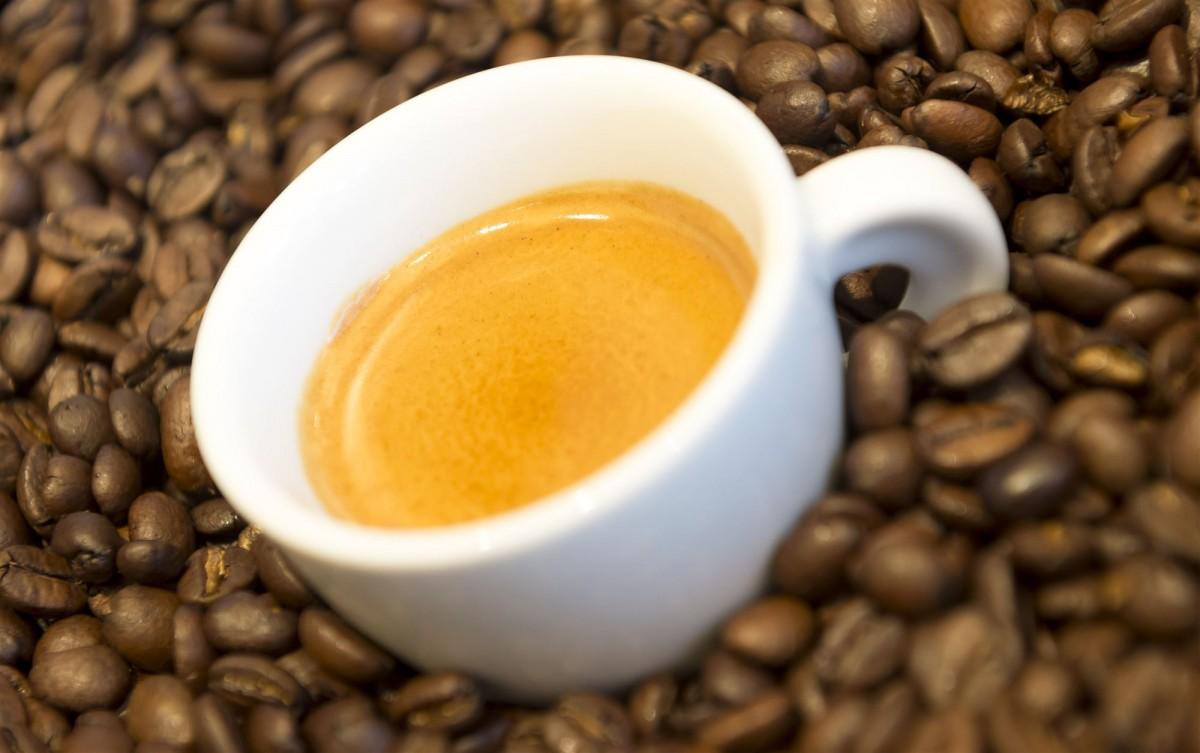 koffie coffee festival delft