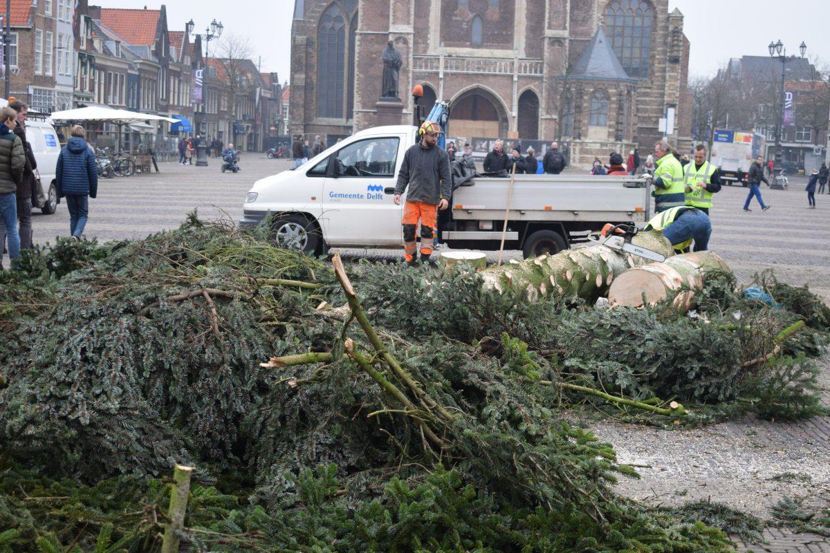kerstboom omgezaagd