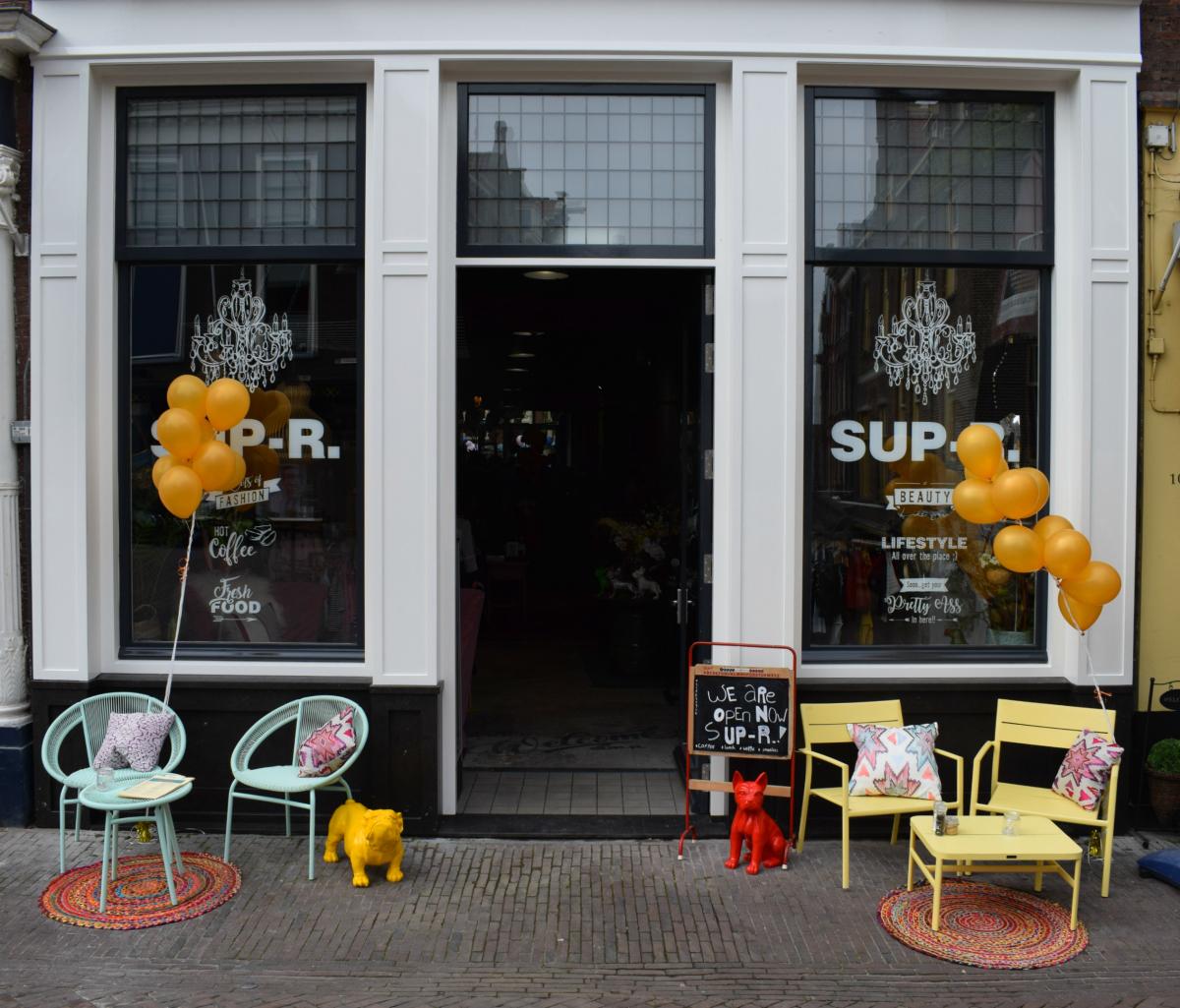 SUP-R Delft
