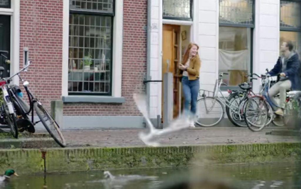 delft-in-plus-commercial