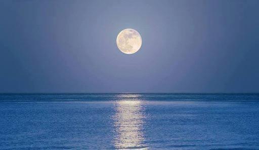 volle maan dip