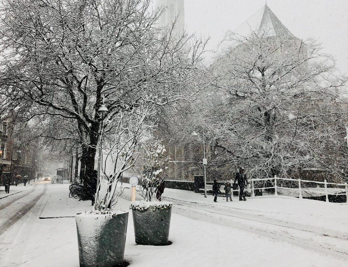 sneeuw in delft