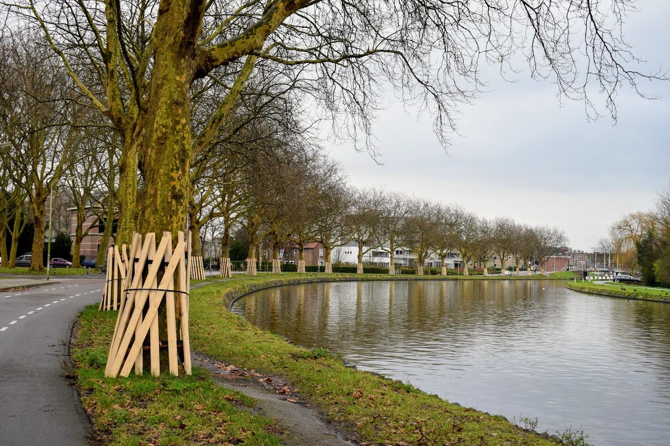houten latjes oostsingel